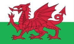 70505 wales_welsh_dragon_flag
